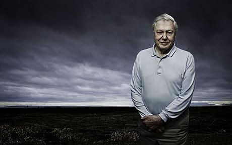 david attenborough versus humanity tv review frozen planet bbc one the dabbler. Black Bedroom Furniture Sets. Home Design Ideas