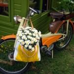 Orla Kiely bicycle www.ShopCurious.com