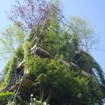 Shard of grass... and trees www.ShopCurious.com