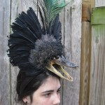 Gator feather headdress