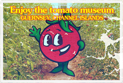 guernsey-tom-postcard