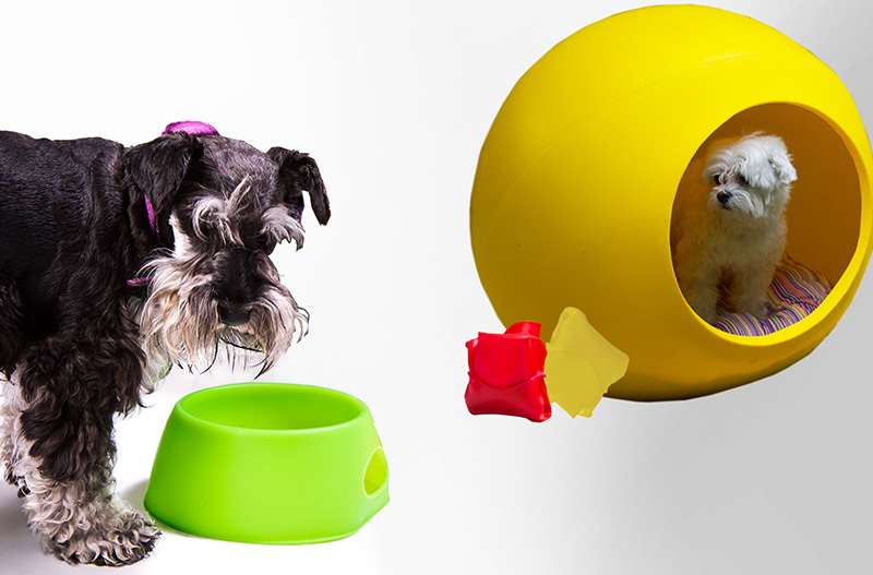 Arquipets-folding-dog-bowl-and-dog-bubble