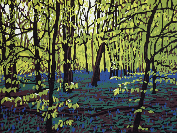 Bluebells on a Bright Day, 2014
