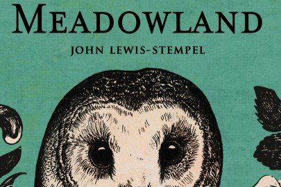 meadowland