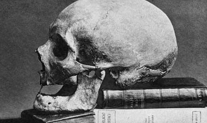 sir-thomas-brownes-skull