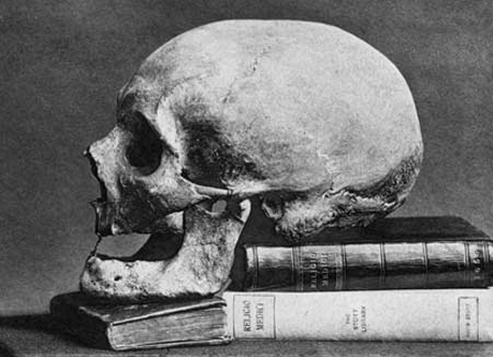 sir-thomas-brownes-skull